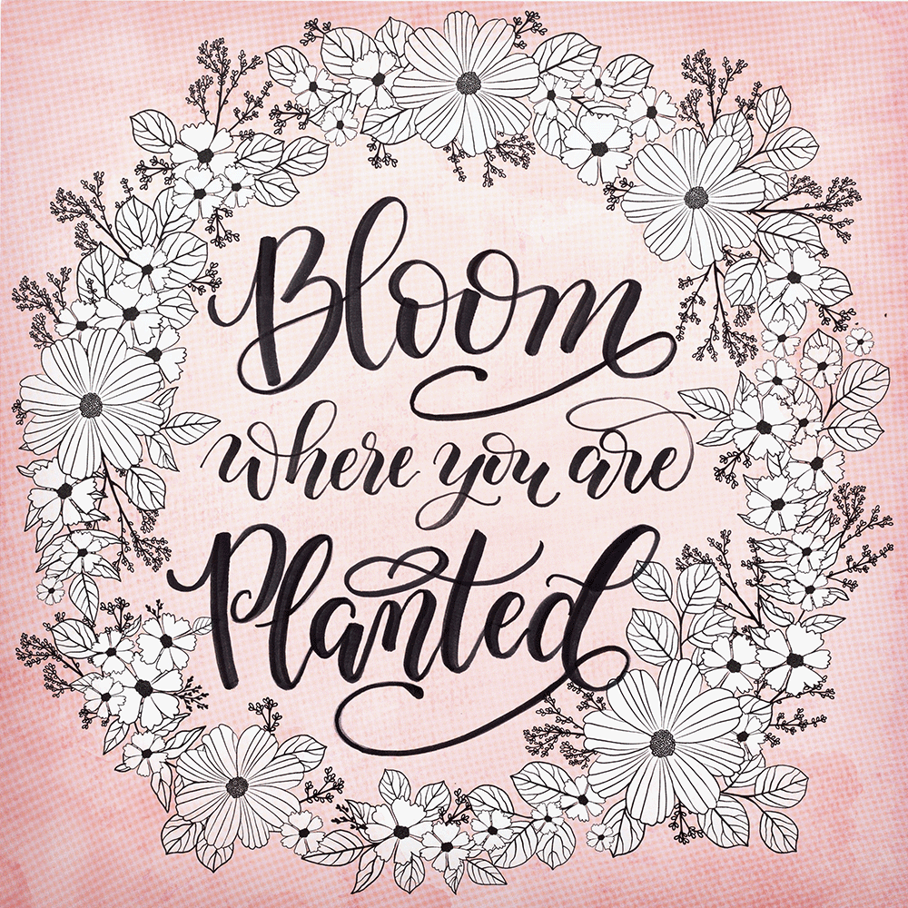 KC-BLOOM-